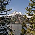 Grand Teton On Jenny Lake - Grand Teton National Park Wyoming by Brian Harig