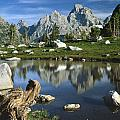 1m9374-grand Teton Reflect by Ed  Cooper Photography