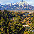 Grand Tetons by Bob Phillips