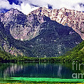 Grand Tetons National Park Painting by Bob and Nadine Johnston
