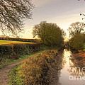 Grand Western Canal At Halberton  by Rob Hawkins