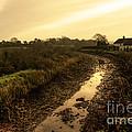 Grand Western Canal Nr Halberton  by Rob Hawkins