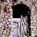 Grandpa's Back Door by John Vincent Palozzi