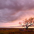 Storm At Dusk 2am-108346 by Andrew McInnes