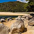 Granite Boulders In Abel Tasman Np New Zealand by Stephan Pietzko