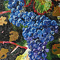 Grapes by Chris Torre