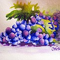 Grapes by Chrisann Ellis