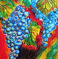 Grapes by Roberto Gagliardi