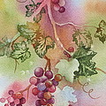 Grapevine by Deborah Ronglien