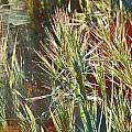 Grass In Sunlight by Werner Lehmann
