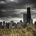 Grasses Along The Skyline by Margie Hurwich
