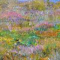 Grasslands by Regina Valluzzi