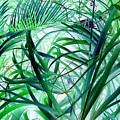 Grassy Glow  by Marianne Dow