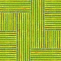 Grassy Green Stripes by Michelle Calkins