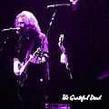 Grateful Dead In Purple - Concerts by Susan Carella