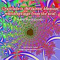 Gratitude Is The Fairest Blossom by Kazim  Abasali