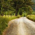 Gravel Road In The Smokies by Andrew Soundarajan
