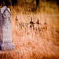 Graveyard 6792 by Timothy Bischoff