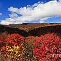 Graveyard Fields In The Mountains by Jill Lang