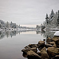 Gray Day In Lake Oswego by Ronda Kimbrow