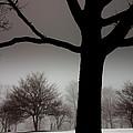 Gray Skies At Night by Ed Smith