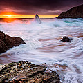 Gray Whale Cove by Alexis Birkill