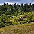 Grayson Highlands by Mel Hensley