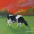 Grazing Cow by Robin Maria Pedrero