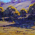 Grazing Kangaroos by Graham Gercken