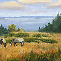 Grazing With A View by Tommy Thompson