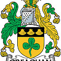 Greaghan Coat Of Arms Irish by Heraldry