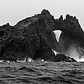 Great Arch On The Farallon Islands by Scott Lenhart