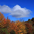 Great Balsam Mountains In The Fall by Mountains to the Sea Photo