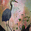 Great Blue Heron Among Cypress Knees by J Larry Walker