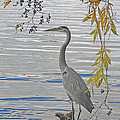 Great Blue Heron by Ann Horn
