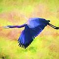 Great Blue Heron In Flight Art by Priya Ghose
