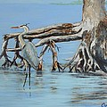 Great Blue Heron by Michael Cook