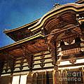 Great Buddha Hall In Todai-ji Nara Japan by Beverly Claire Kaiya