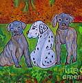 Great Dane Pups by Ella Kaye Dickey