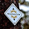 Great Eastern Trail Marker by Tara Potts