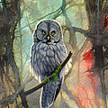 Great Grey Owl In Abstract by Paul Krapf