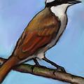 Great Kiskadee Bird by Joyce Geleynse