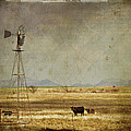 Great Plains by Lana Trussell