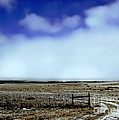 Great Plains Winter by Tim Richards