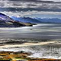 Great Salt Lake From Antelope Island by Roxie Crouch