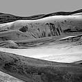 Great Sand Dunes - 1 - Bw by Nikolyn McDonald