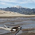Great Sand Dunes Two by Erika Weber