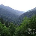 Great Smokey Mountains by R A W M