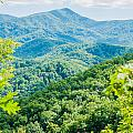 Great Smoky Mountains National Park Near Gatlinburg Tennessee. by Alex Grichenko