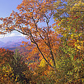 Great Smoky Mts From Blue Ridge Pkwy by Tim Fitzharris
